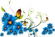 zveti